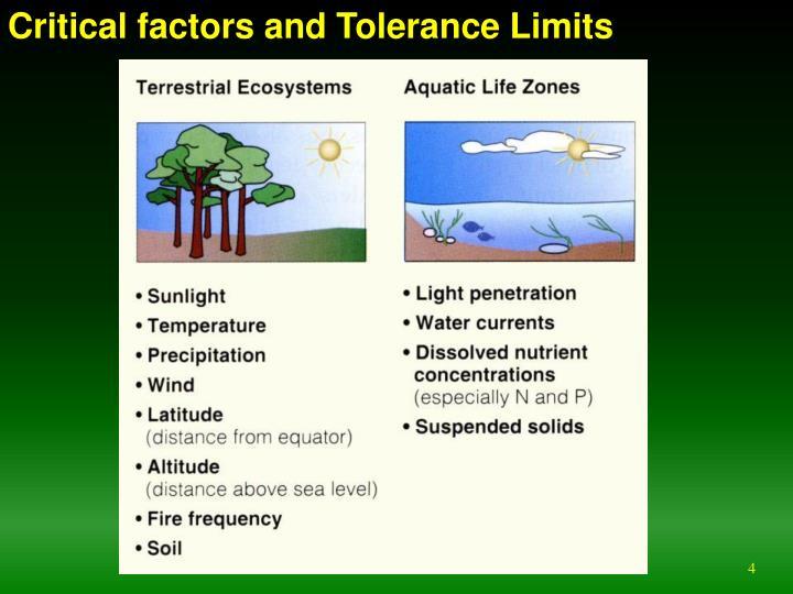 Critical factors and Tolerance Limits