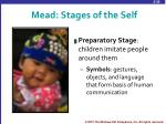 mead stages of the self