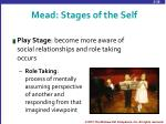 mead stages of the self1