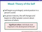 mead theory of the self