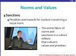 norms and values1