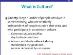what is culture1