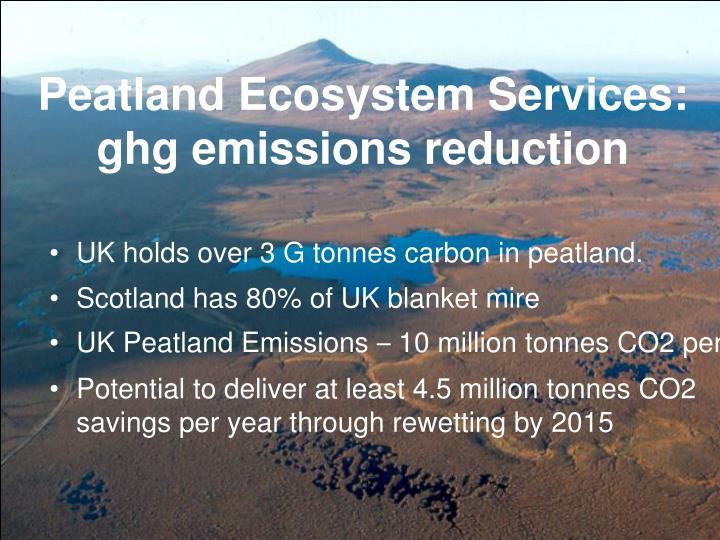 Peatland Ecosystem Services: