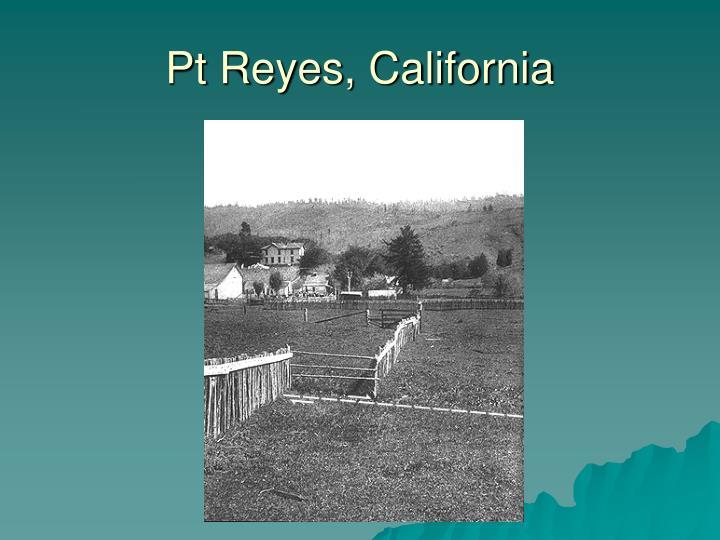 Pt Reyes, California