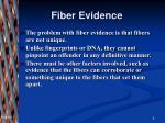 fiber evidence2