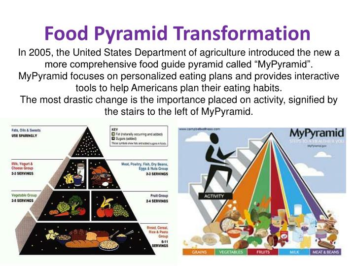 Food Pyramid Transformation