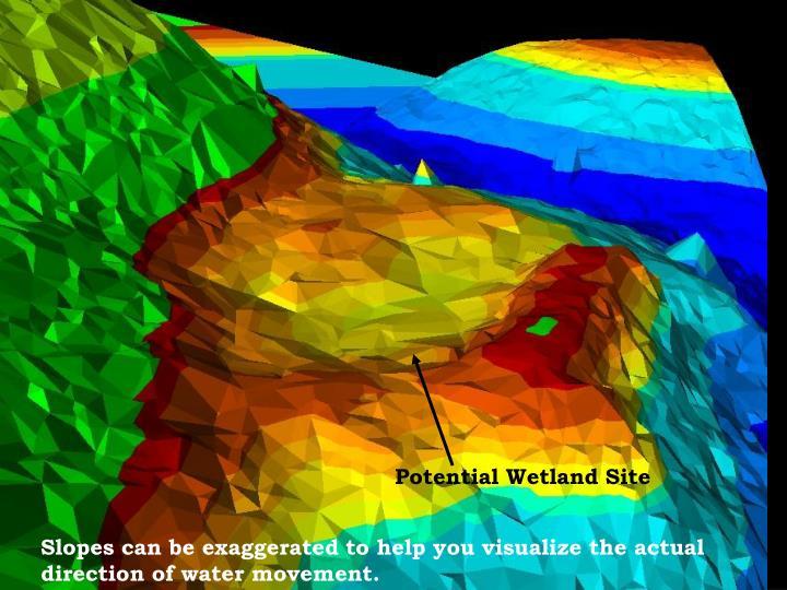 Potential Wetland Site