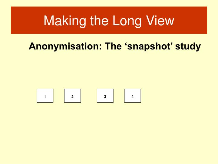 Anonymisation: The 'snapshot' study