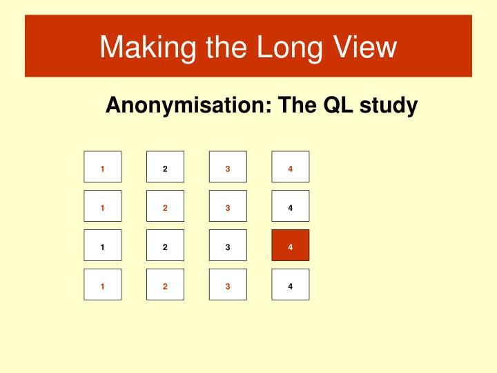 Anonymisation: The QL study