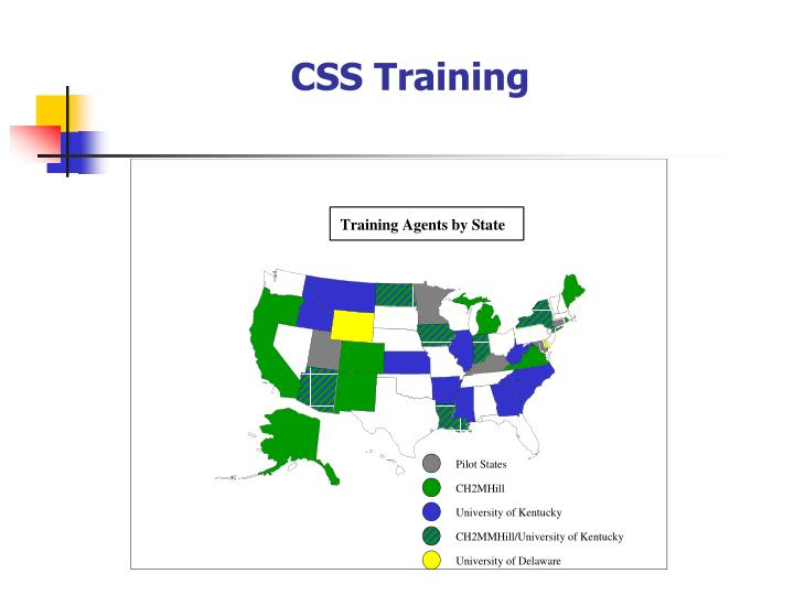 CSS Training