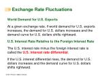 exchange rate fluctuations1