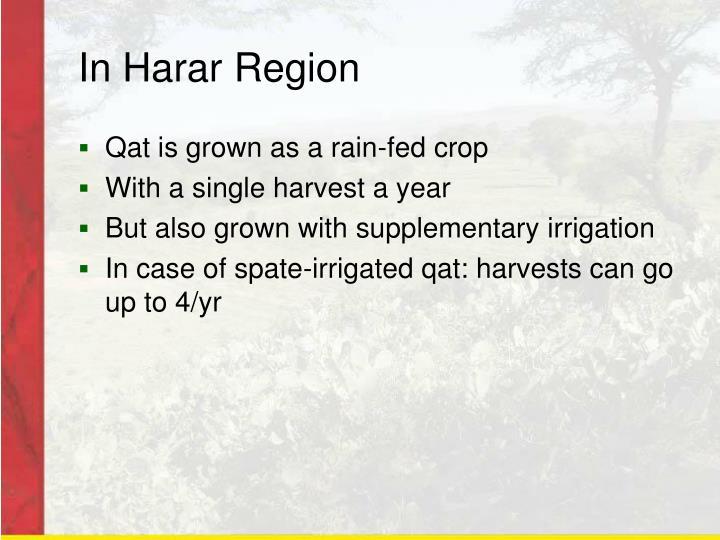 In Harar Region