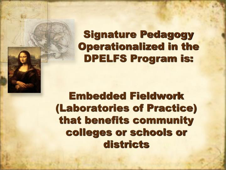 Signature Pedagogy Operationalized in the DPELFS Program is: