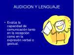 audicion y lenguaje