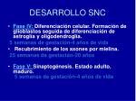 desarrollo snc1