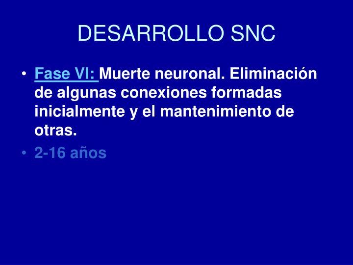 DESARROLLO SNC