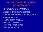 valoracion del neuro desarrollo