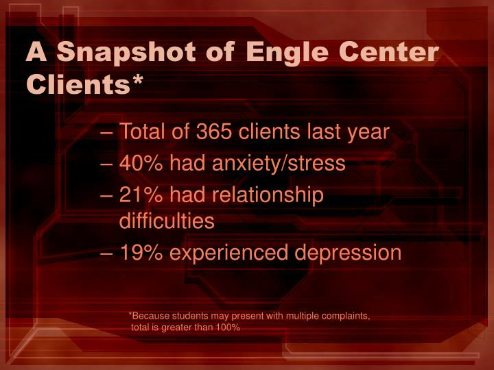 A Snapshot of Engle Center Clients*