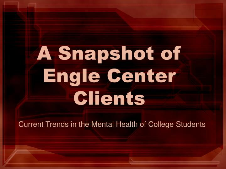 A Snapshot of Engle Center Clients