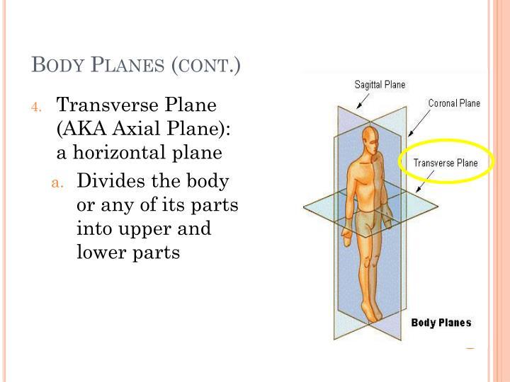 Body Planes (cont.)