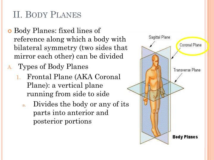 II. Body Planes