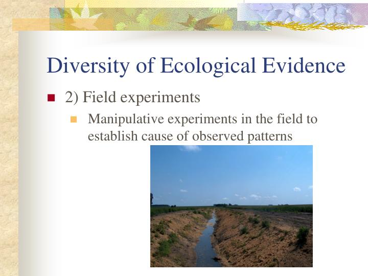 Diversity of Ecological Evidence