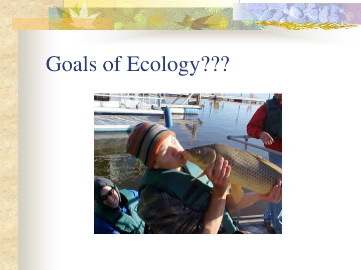 Goals of Ecology???
