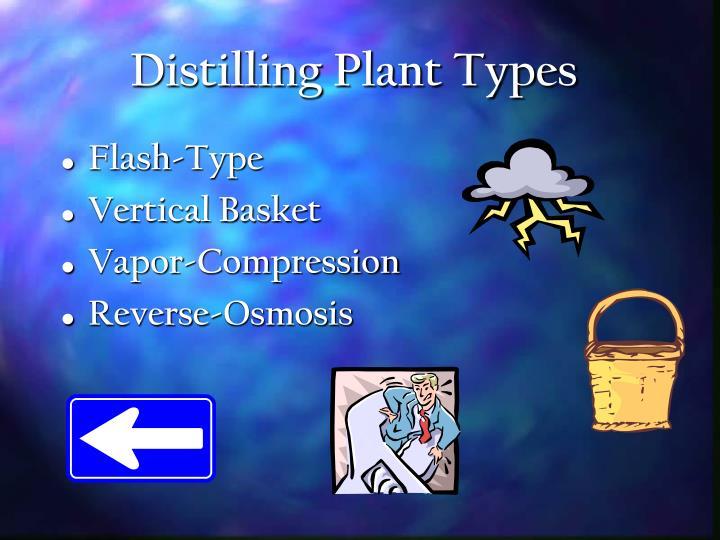 Distilling Plant Types