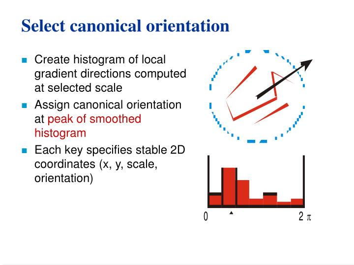 Select canonical orientation