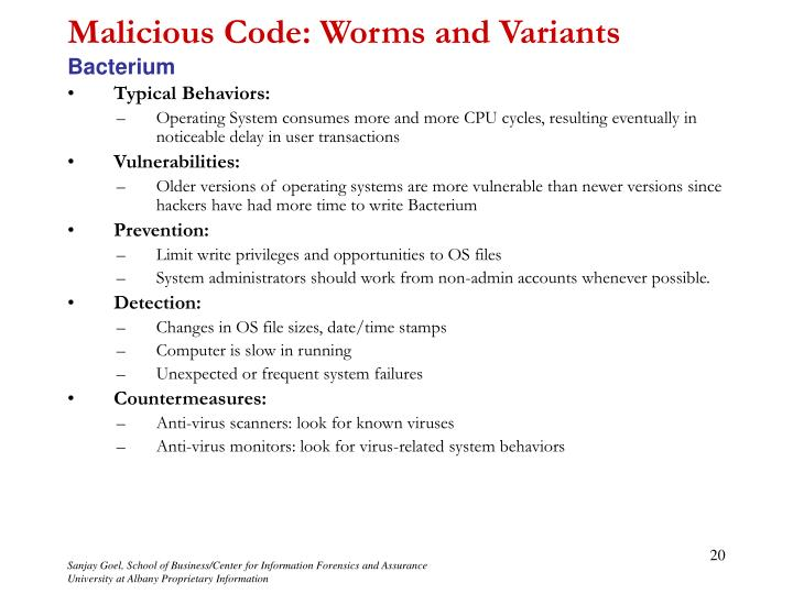 Malicious Code: Worms and Variants