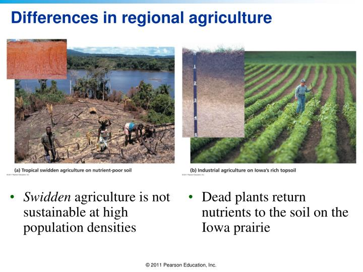 Differences in regional agriculture