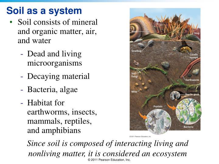 Soil as a system