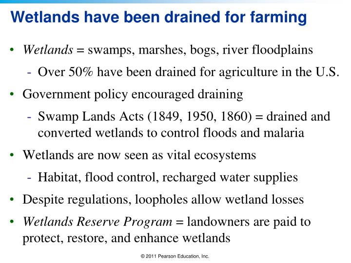 Wetlands have been drained for farming