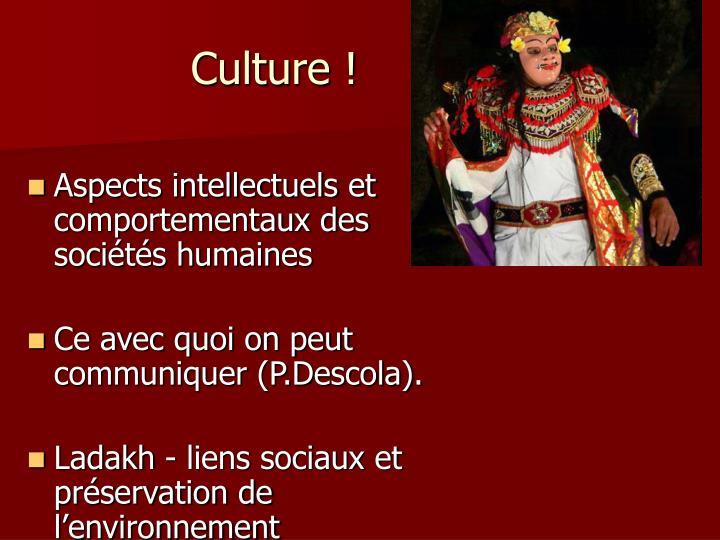 Culture !