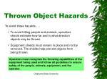 thrown object hazards2