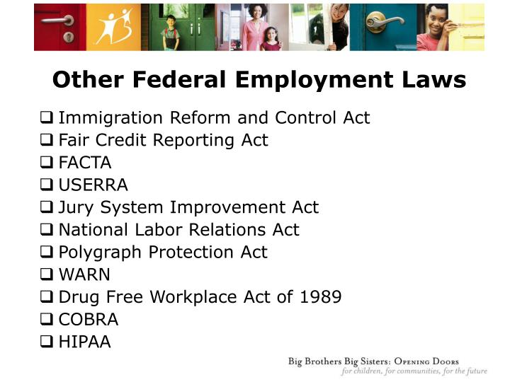 Other Federal Employment Laws