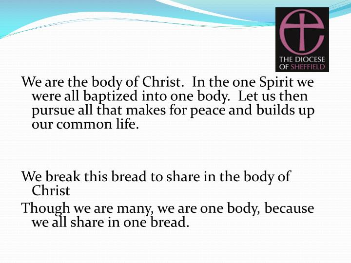 We are the body of Christ.  In the one Spirit we were all baptized into one body.  Let us then pursue all that makes for peace and builds up our common life.