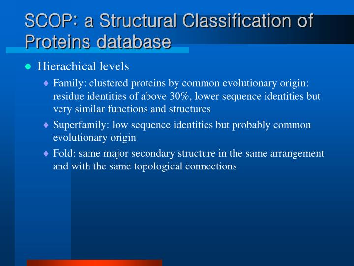 SCOP: a Structural Classification of Proteins database