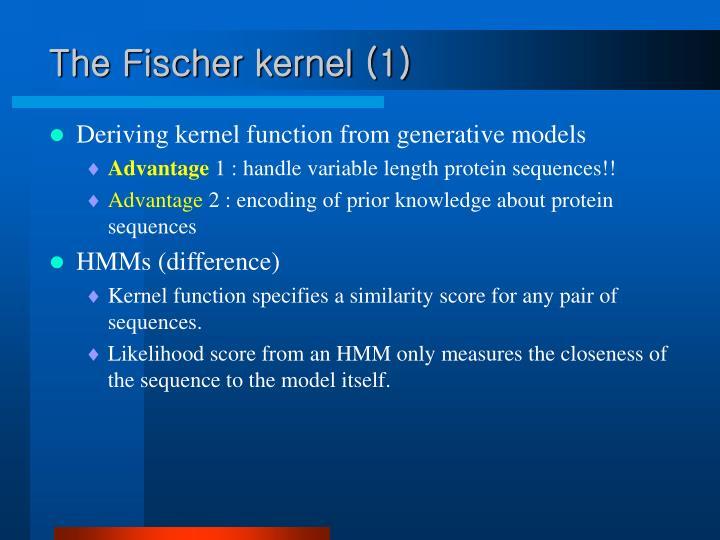 The Fischer kernel (1)