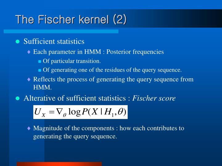 The Fischer kernel (2)
