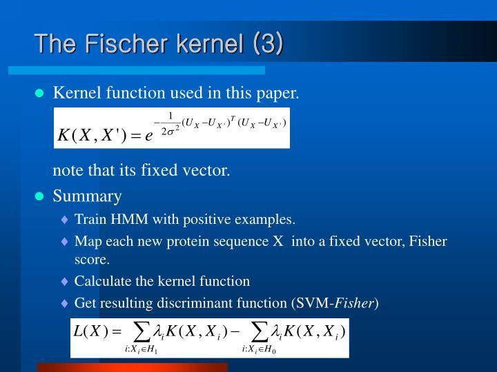 The Fischer kernel (3)