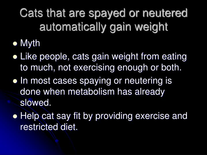 Cats that are spayed or neutered automatically gain weight