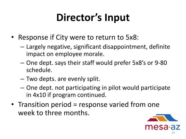 Director's Input