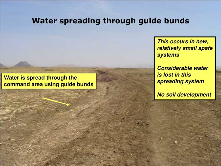 Water spreading through guide bunds