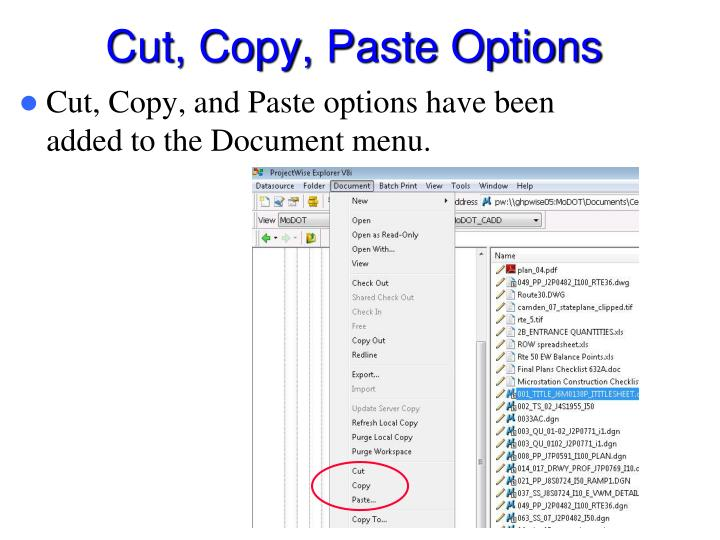 Cut, Copy, Paste Options