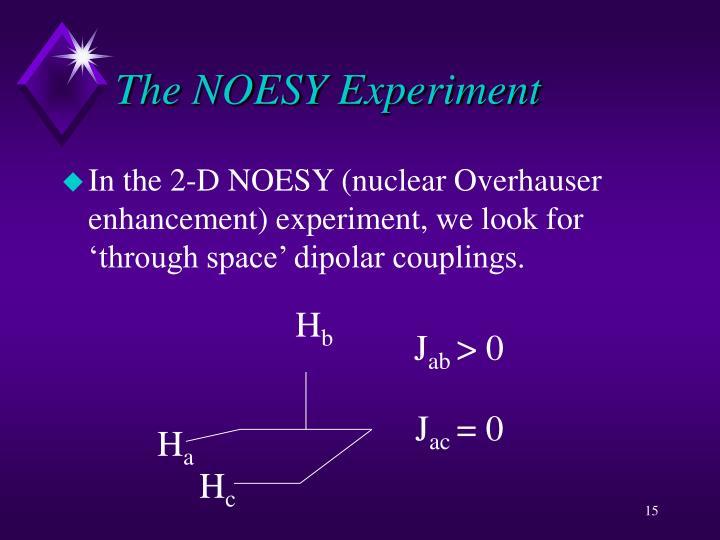 The NOESY Experiment