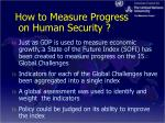 how to measure progress on human security