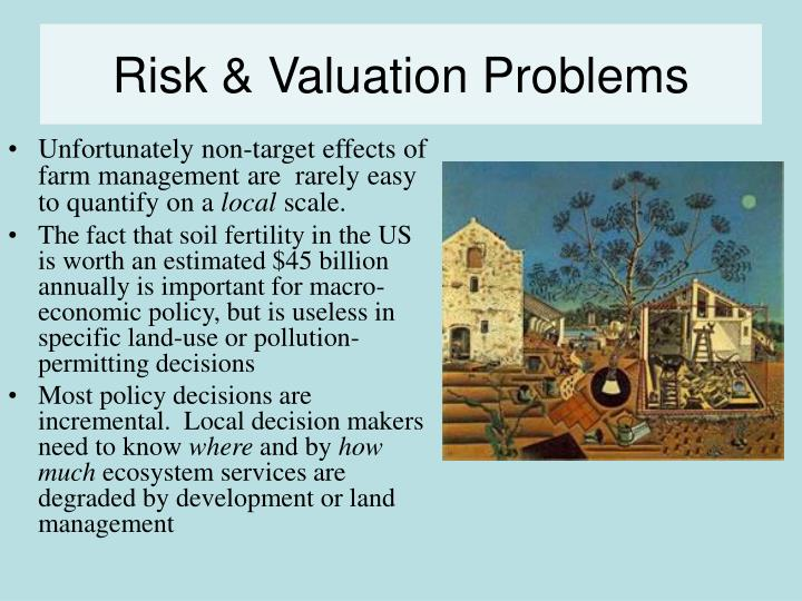 Risk & Valuation Problems