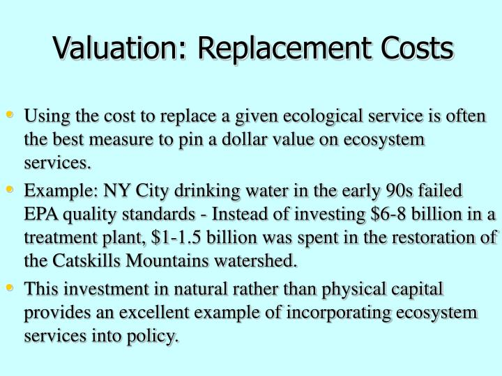 Using the cost to replace a given ecological service is often the best measure to pin a dollar value on ecosystem services.