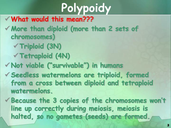 Polypoidy